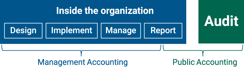 Management Accounting and Public Accounting